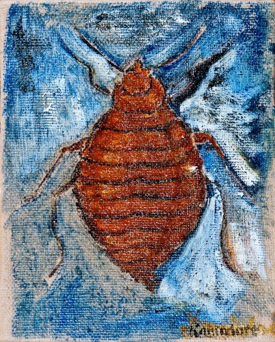 Bedbug, 2010 - Bill Komodore